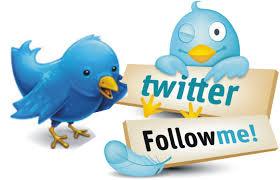Cómo tener muchos seguidores en twitter